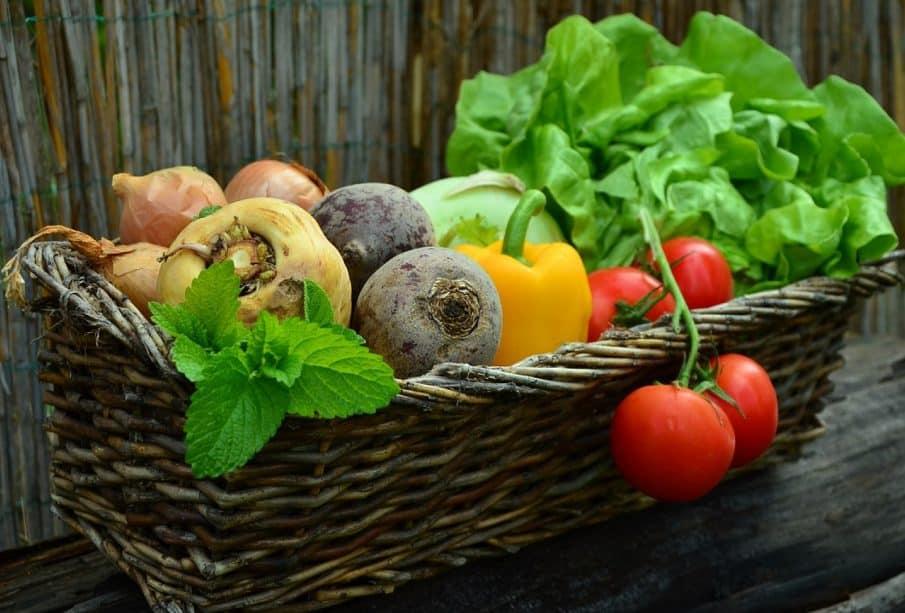 Tout savoir sur le coupe-légumes
